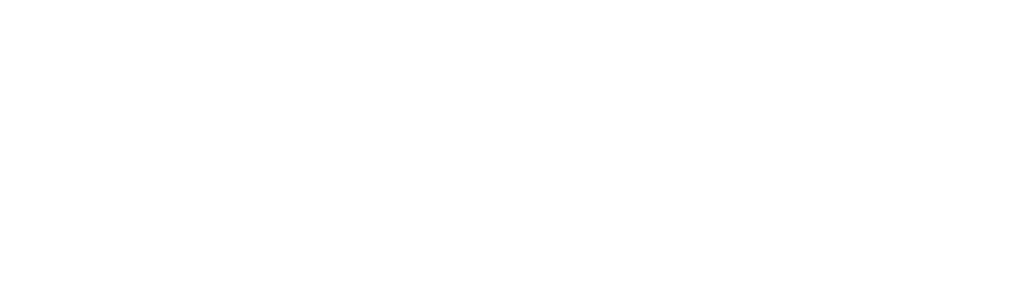 TEAM VIKING